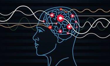 mental health brain diagram